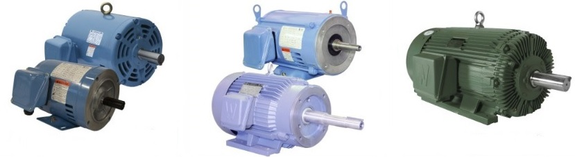 world-wide-electric-ac-low-voltage-motors-1